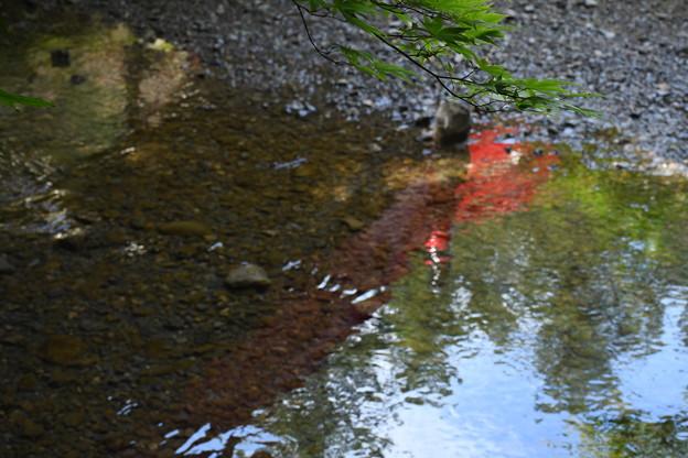 水面に映る赤い橋