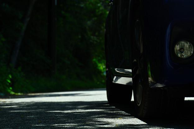 緑の小道のCT
