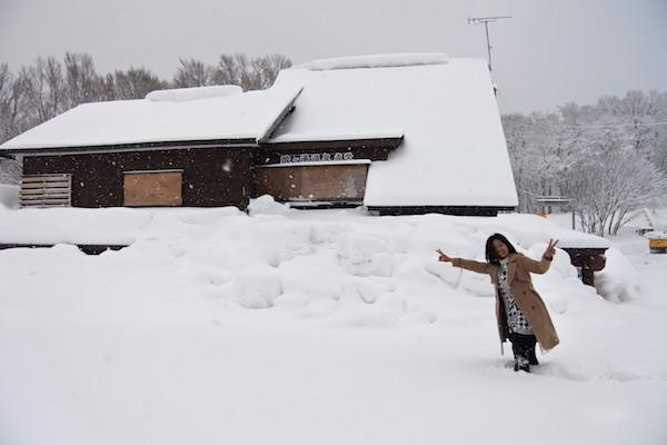 いつも寄る萱野茶屋は雪に閉ざされ