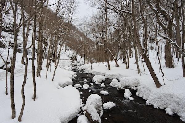 前日に雪が降ったおかげか、1日目よりも綺麗な奥入瀬渓流