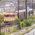 写真: 大井川鐵道で復活したE31(E34)