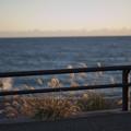 Photos: 静岡旅行-夕日の海岸線