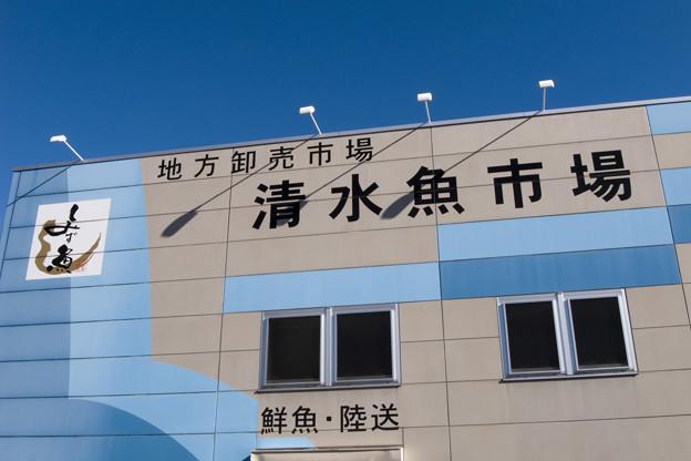 静岡旅行-清水港