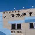 写真: 静岡旅行-清水港