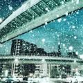 Photos: 名古屋市内の雪