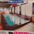 写真: 28 12 福岡 筑紫川温泉 虹の宿 花景色 6