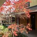 写真: 28 12 熊本 玉名温泉 庄屋の湯 2