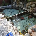 写真: 28 12 熊本 玉名温泉 立願寺温泉ホテル 4