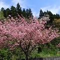 写真: 29 GW 山形 酒田 風景 1
