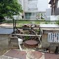 写真: 29 5 長野 星川温泉 風景 1