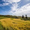 写真: 高原の秋景色♪