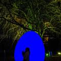 写真: 福岡城 チームラボ 城跡の光の祭♪3