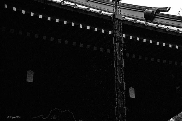 静岡桜&グルメツーリング-1-9