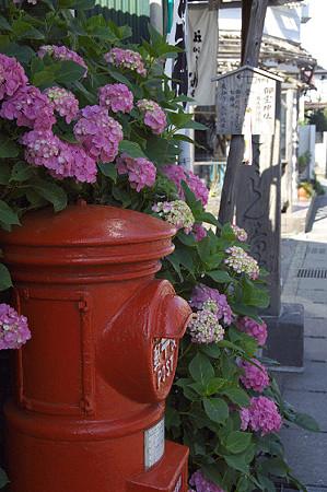 丸いポストと紫陽花