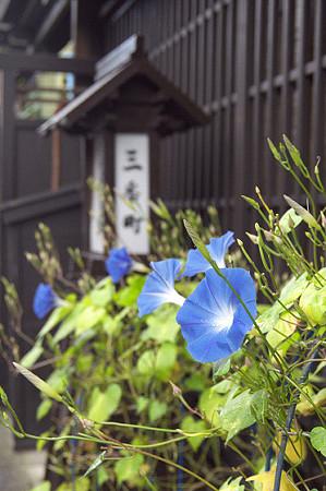 飛騨高山 02