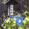 写真: 飛騨高山 02