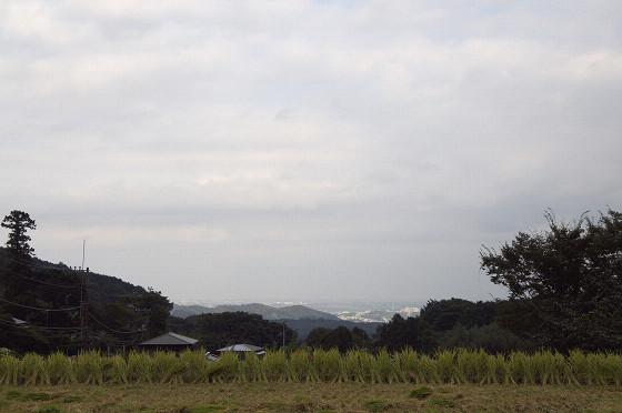 写真: 阿夫利神社から日向薬師へ 21