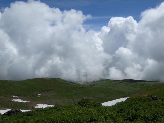 写真: 鳥海山は雲の向こう