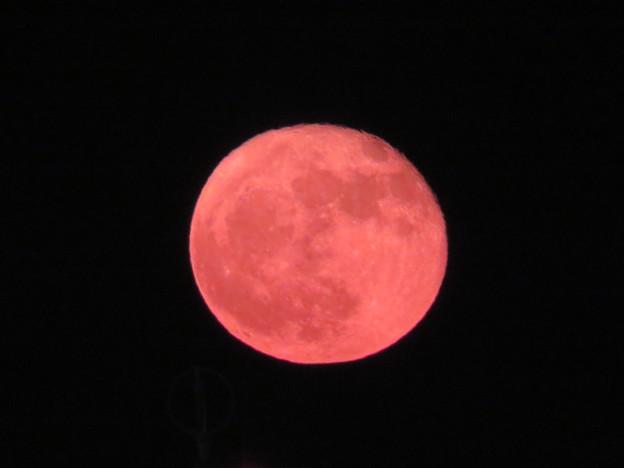 写真: 赤い満月