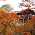 東福寺(2)