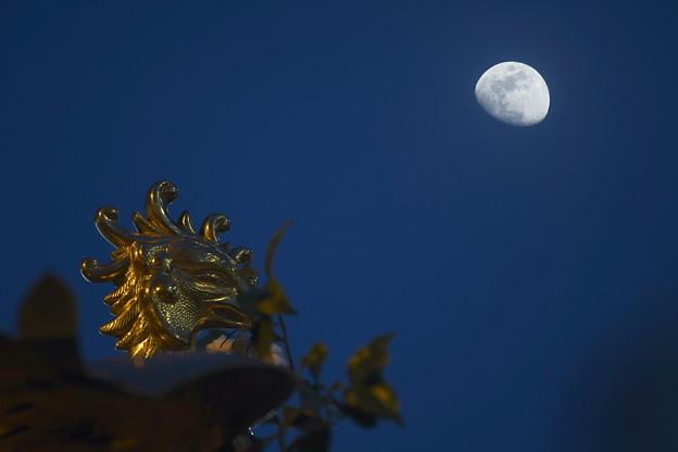 夕神輿とお月さん