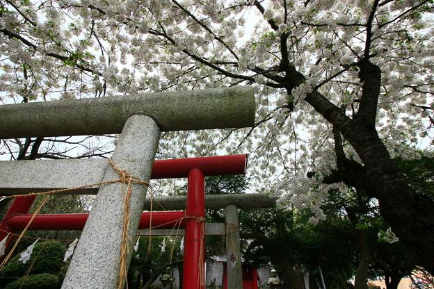 790 上孫伏見稲荷神社