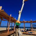 写真: 茨城県北芸術祭 712  アートビーチくじはま