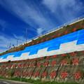 Photos: 茨城県北芸術祭 717  アートビーチくじはま