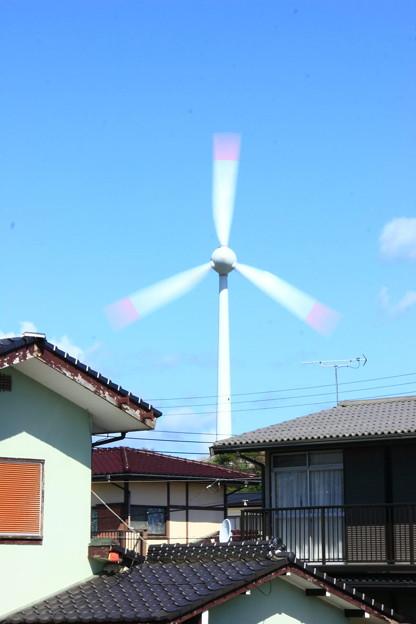 写真: 7 大沼の風車 日立市