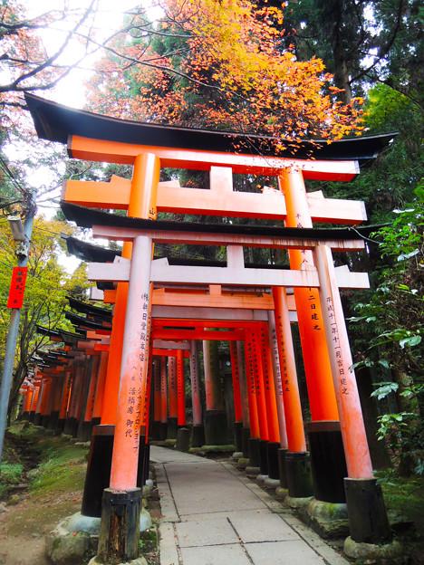 京都伏見稻禾神社