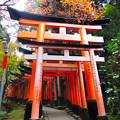 写真: 京都伏見稻禾神社