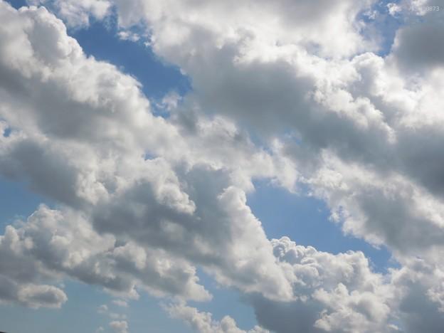 空いっぱいに流れる雲の群れ