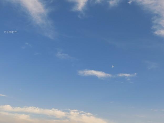 綺麗な秋の雲とお月様