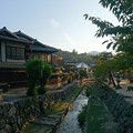 Photos: 宮島的街道