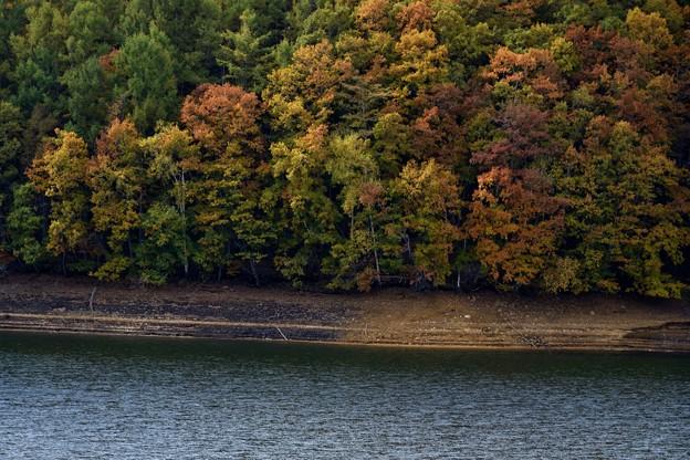 岩洞湖紅葉 171015 (2)