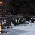 高松の池 180102 (2)