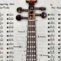 写真: 音程付きの楽器