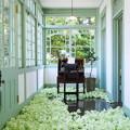 Photos: green room