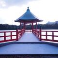 Photos: 大濠公園