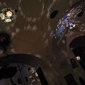 Photos: 可愛いマクハーの天井