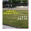 写真: 琵琶湖沿い