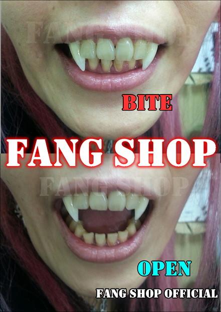 FANG SHOP 付け牙 N-2151