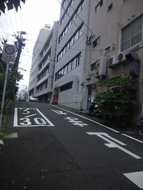 【12277号】Mii合成素材:歩道 平成2907272