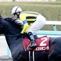 写真: イスラボニータ(2017/12/23 阪神11R 阪神C 返し馬)