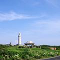 写真: 角島灯台_1