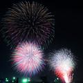 写真: くきのうみ花火の祭典2017_3