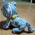 写真: ネコのぬいぐるみ0422