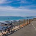 三浦半島サイクリング__-0241